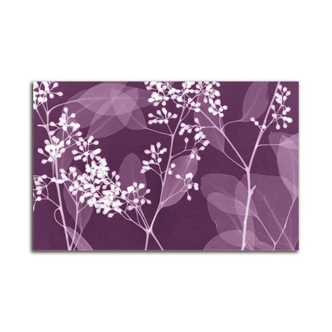 絵画 横長 高級 花 EucalyptusBranches SIZE/mm 890*590 おしゃれ 壁掛け 絵 インテリア「究極の繊細美 PLEXIGLASレントゲンアート」