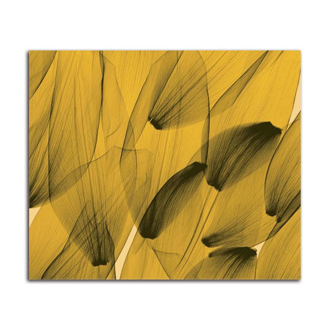 絵画 大型 高級 花 Tulip Petals Gold SIZE/mm 1000*800 おしゃれ 壁掛け 絵 インテリア「究極の繊細美 PLEXIGLASレントゲンアート」【店頭受取対応商品】ギャラリー 正規品
