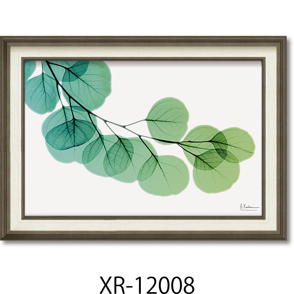 絵画 額入り ユーカリ Msize 「植物の持つ繊細美を透明感と優しい色彩で表現」インテリア インテリアアート 壁掛け【店頭受取対応商品】