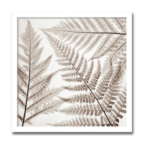 絵画 インテリア 北欧 アート ポスター 花 Ferns シダ葉おしゃれ 壁掛け 額入り 玄関 飾る ホスピタル パブリック