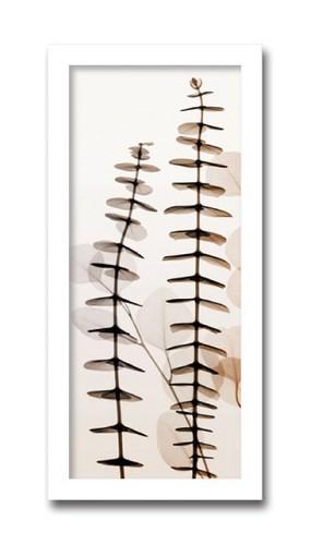 絵画 インテリア 花 植物 Eucalypti ユーカリおしゃれ 絵 壁掛け モダン アート ポスター アートフレーム
