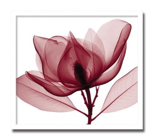 【SIMPLEMODERN 癒しのインテリア】絵画 花 Red Magnolia レッドマグノリアおしゃれ 絵 壁掛け モダン アート ポスター アートフレーム