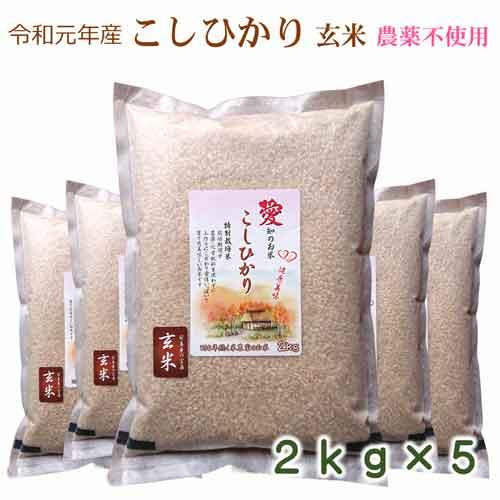 玄米 美味しい希少早刈り玄米 無農薬 コスパに挑戦10kg(2kg×5袋) こしひかり令和元年産 脱酸素パッケージ 防災食 防災グッズ 備蓄用にも 愛知県産 数量限定