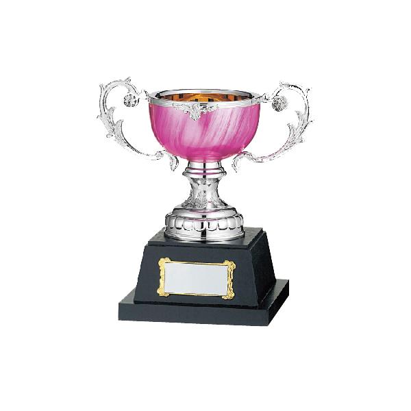 優勝カップ カラーハーモニーGS-174C【120x240mm】【保存箱付】26 A-6【送料無料】