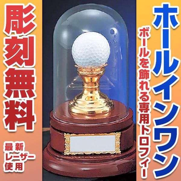 【彫刻無料】ホールインワン専用トロフィー【高さ180mm】VT-3393【保存箱付】K8