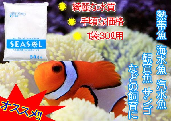 人工海水 日本製 熱帯魚 海水魚 汽水魚 観賞魚 サンゴなどの飼育に 送料0円 981 激安 SEASOL 30リットル用 人工海水の素 超お得 シーソル