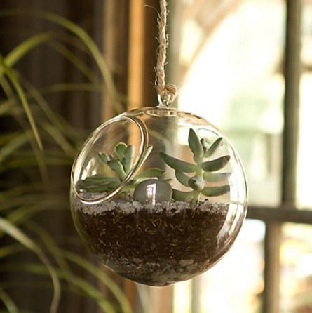 Airplanes terrarium glass planter hanger hanging 12 inch round bottom