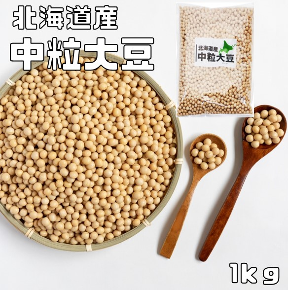 ポピュラーな大豆です 中粒サイズ 大豆 まめやの底力 『1年保証』 北海道産 中粒大豆 スーパーSALE セール期間限定 国産 とよまさり 1kg だいず リニューアル