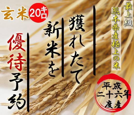 26年度熊本産新米ヒノヒカリ予約10キロ×2袋(玄米)