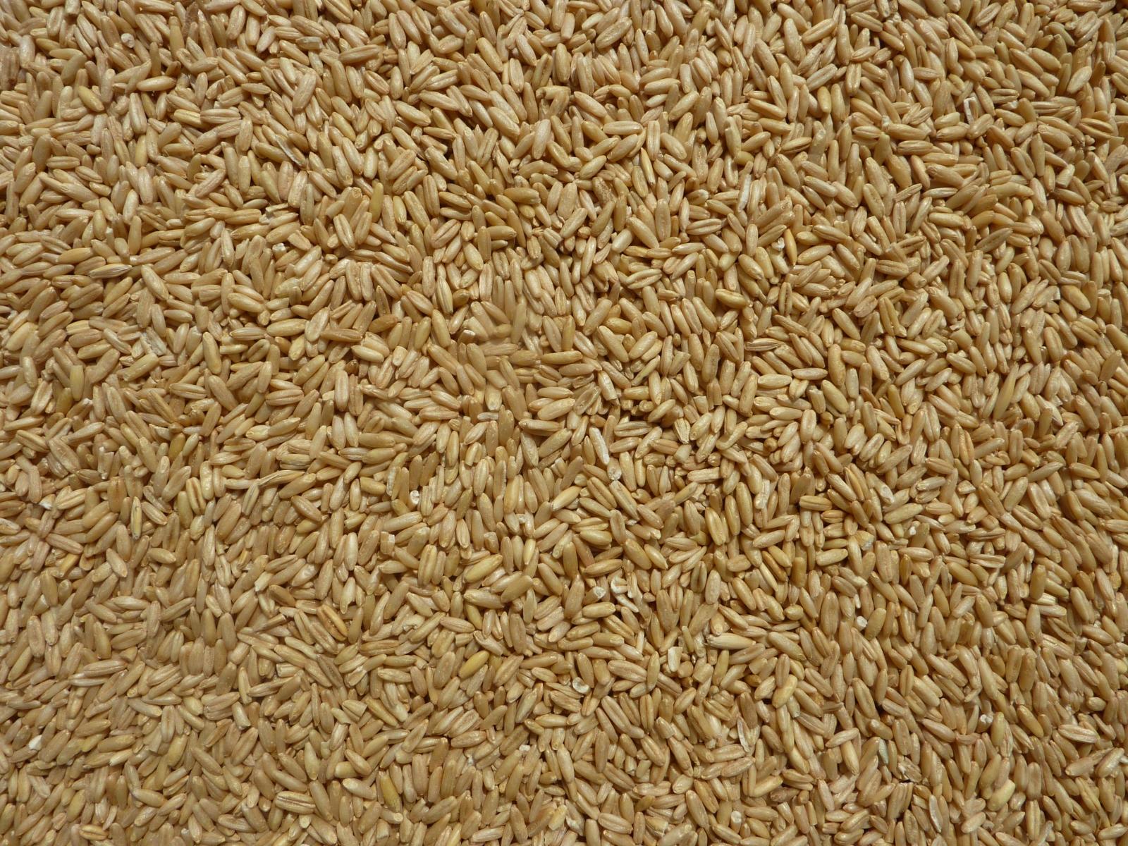 ふるさと割 冷蔵保存 小鳥の餌 店舗 ムキ燕麦 25kg※5月~10月迄冷蔵保存