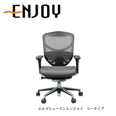 デスクチェア エルゴヒューマンエンジョイ EJ-LAM ロータイプ【リクライニング 高機能 メッシュチェアー 高機能】