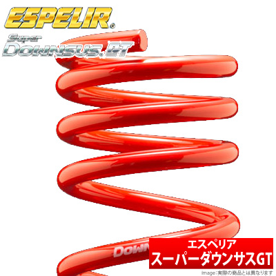 【エスペリア Espelir】スカイラインクーペ 等にお勧め スーパーダウンサスGT / リア用左右セット 型式等:ECR33 品番:ESN-164R