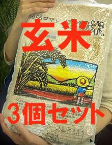 【まとめ買い】有機JAS認定 太陽の有機米(つがるロマン)玄米 15kg(5kg×3袋)※自然農法米 ※30年度米(TZ)※6月中旬頃~新米への切替時期までは真空パック包装。他は通常包装)
