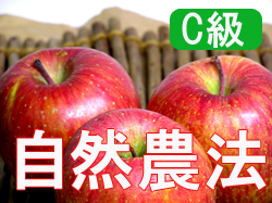 Houzumi organic farm natural farming apples Fuji < 20 kg, 1524 > * wake there and scratch and household