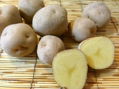 Approximately 1 kg of organic farming potato (Class B product) of Hiroi