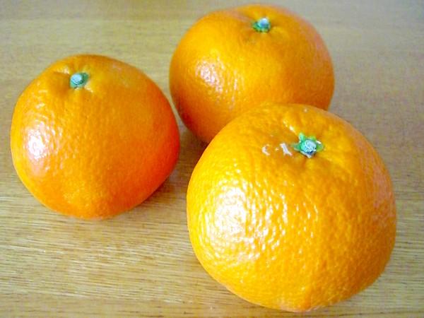 Approximately 1 kg of natural agricultural methods Iyo orange (size mixture) ※Natural agricultural methods (organic JAS)