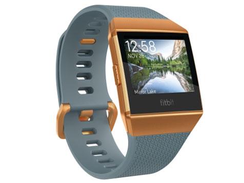 Fitbit Ionic スマートウォッチ GPS搭載 Slate Blue/Burnt Orange L/Sサイズ [日本正規品] FB503CPBU-CJK 【新品】【送料無料】