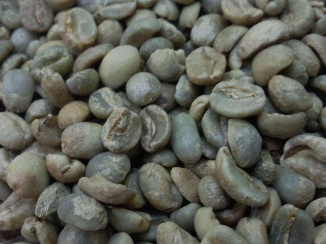 ★ 激安 コーヒー生豆  【送料無料(一部地域を除く)】コーヒー 生豆 モカマタリ ベガ 10kg(5kg×2)