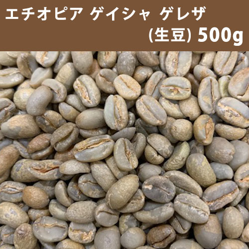 激安コーヒー生豆 送料無料 メール便 格安SALEスタート コーヒー 生豆 エチオピア 250g×2 美品 ゲイシャ ゲレザ 同梱不可 G3500g