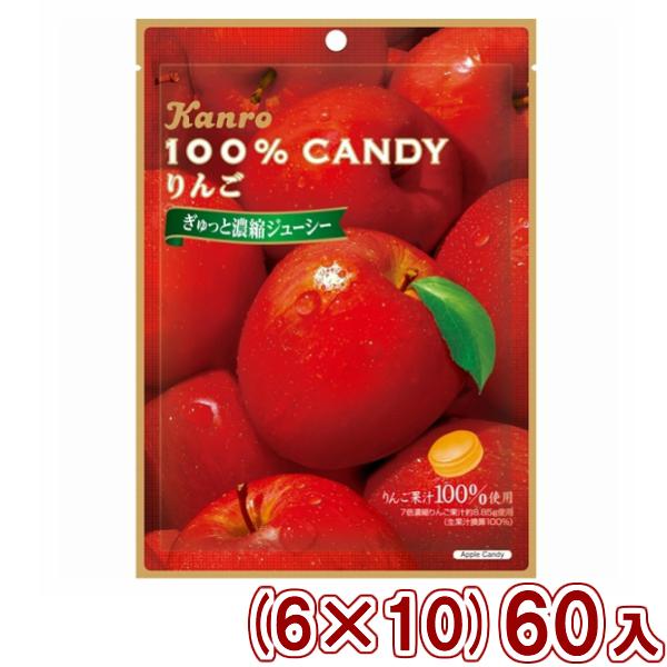 (本州送料無料) カンロ 100%キャンディ りんご (6×10)60入 (Y12)