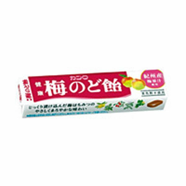 (本州送料無料)カンロ 健康梅のど飴ST (10×12)120入 (Y10)