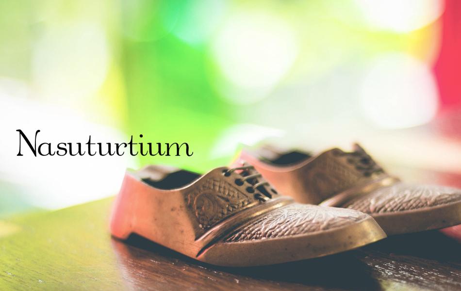 Nasuturtium ナスタチウム:匠TAKASHI メーカー直販店|国内外問わず選りすぐりの商品をご提供します。