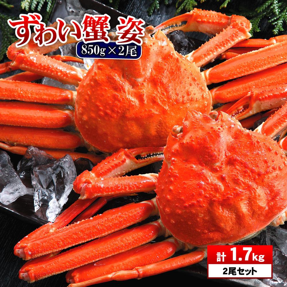 さっぽろ朝市 高水 父の日 食べ物 プレゼント 特大 ズワイ蟹 姿850g×2匹 1.7kg ズワイガニ 蟹 セット ずわいがに 年末年始 ズワイ蟹 ズ…