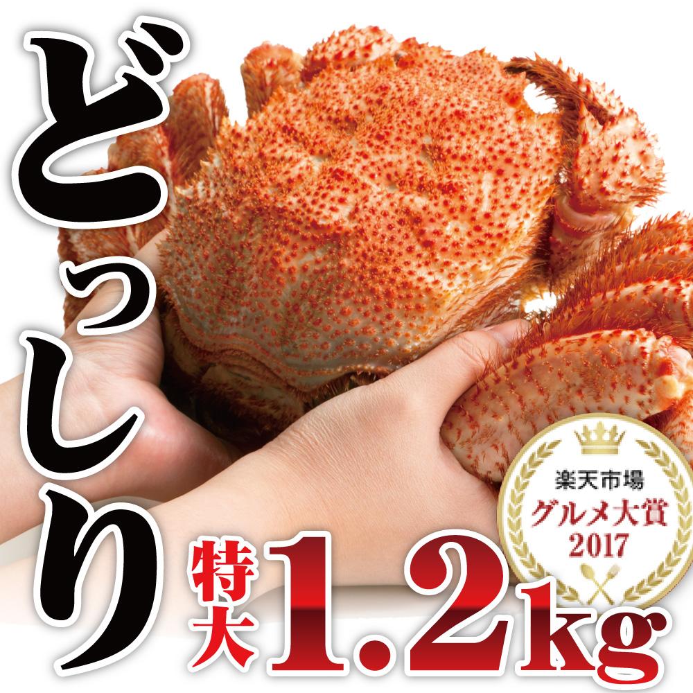 さっぽろ朝市 高水 毛蟹 毛ガニ 毛がに 超特大ジャンボ毛蟹 1尾1.2kg 最高ランク カニ 蟹 姿 特大 セット みそ 海鮮 年末 かに kani ギ…