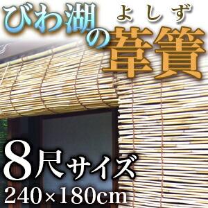 琵琶湖 よしず 8尺 240cm 2.4m 国産 日本製 天然 高級 葦簀 日よけ オーニング スクリーン すだれ 簾和風 インテリア 夏 日陰 涼しい