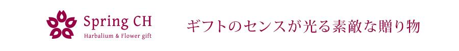 ハーバリウム専門店スプリングCH:プレゼント 女性 アロマディフューザー 誕生日 景品