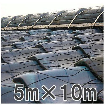 屋根瓦飛散防止ネット 50号 5m×10m(防災 台風 強風 突風 竜巻 防風 対策)【smtb-ms】