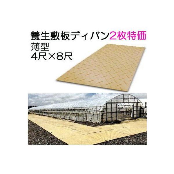 (2枚特価) 養生敷板 ディバン 薄型 4尺×8尺×13mm(8mm凸部5mm)2枚セット 農業用 茶色(法人届けor営業所で引取り) saka