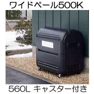 リッチェル ワイドペール 500K ステーションボックス キャスター付き 560lL