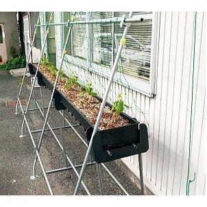 緑のカーテン グリーンらくラックセット 幅3m×高さ4.5m 【smtb-ms】