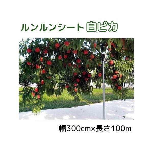 ルンルンシート白ピカ 幅300cm×100m 光合成促進 遮熱性防草シート 小泉製麻