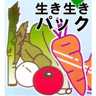 OPP防曇野菜印刷袋 生き生きパック#25にんじん、メークインなど・・・6000枚【smtb-ms】[野菜袋 瀧商店]