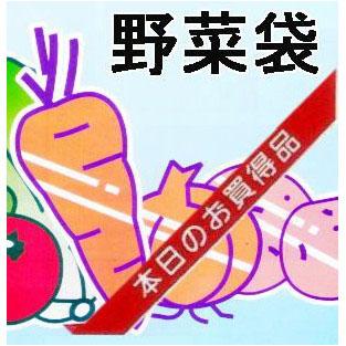 OPP防曇野菜印刷袋 生き生きパック#25ごぼう、ほうれん草など・・・6000枚【smtb-ms】[野菜袋 瀧商店]
