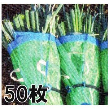 ネギマキネット 包装ネット 60×100cm Sタイプ 50枚マキマキネット【smtb-ms】