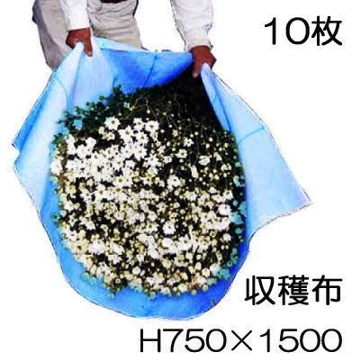 収穫袋 収穫布 ベンリークロス H750×1500 ブルー 10枚セット ネギマキネット