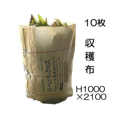収穫袋 収穫布 ベンリークロス H1000×2100 色ベージュ 10枚セット ネギマキネット