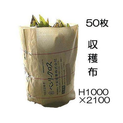 収穫袋 収穫布 ベンリークロス H1000×2100 色ベージュ 50枚 ネギマキネット