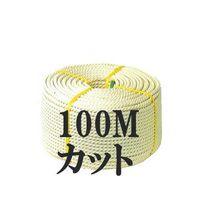 クレモナロープ (国産品) 10mm×100M ナロック