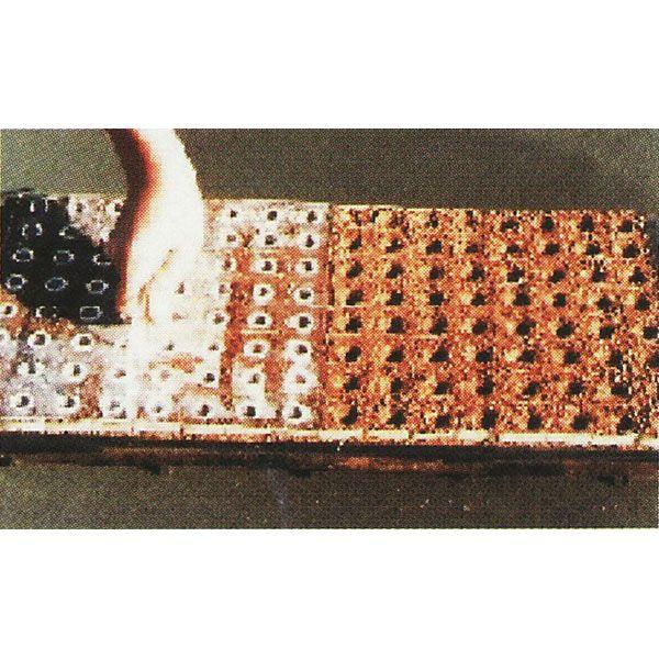 ポットプレート CP250B(中) 1回押し 播種穴あけ器 [ペーパーポット チェーンポット]【smtb-ms】
