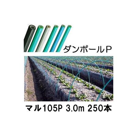 ダンポールP マル105 ×3.0m 緑 トンネル幅160cm 徳用 250本[トンネル支柱 アーチ支柱] 宇部エクシモ