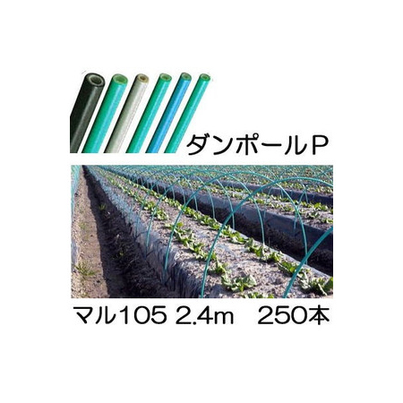ダンポールP マル105 ×2.4m 緑 トンネル幅120cm 徳用250本 [トンネル支柱 アーチ支柱] 宇部エクシモ