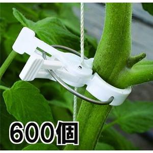 ハウス栽培用 誘引具 つりっ子 トマト用 600個入 ナスニックス(100個入×6袋)