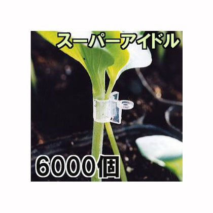 接木ホルダー スーパーアイドル6000個入(1000個入×6袋)※26号、31号からお選びください 【smtb-ms】
