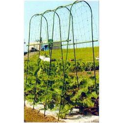 菜園 アーチ支柱 A-210型 間口37cm径14mm×210cm 20本セット (法人or営業所渡し選択) 第一ビニール
