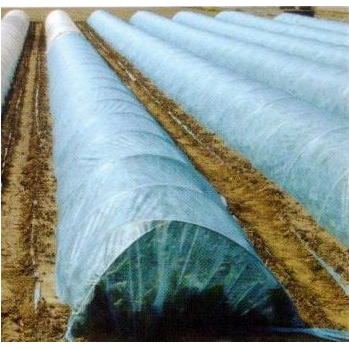 九州の法人なら送料無料光質をコントロールする 不織布 農業用べたがけ資材 青パオパオ 180cm×200m透光率85% 九州の法人なら送料無料