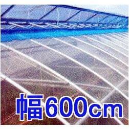 塗布無滴農POイースター 厚み0.1mm 幅600cm長さ30m 重さ約17.1kg 【smtb-ms】
